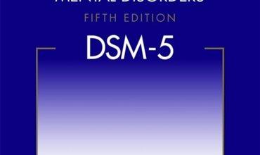 Verslag studiedag DSM 5