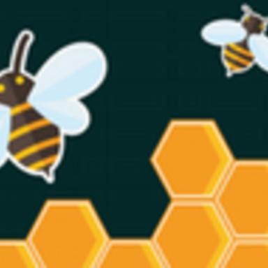 afbeelding bij Bee Extreme