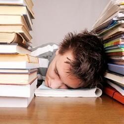 afbeelding bij artikel Verhoogt examenstress het risico op zelfdoding?