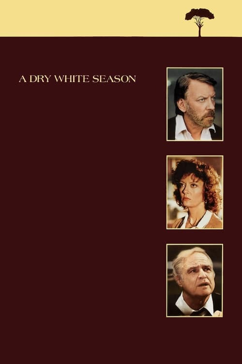 movie cover - A Dry White Season