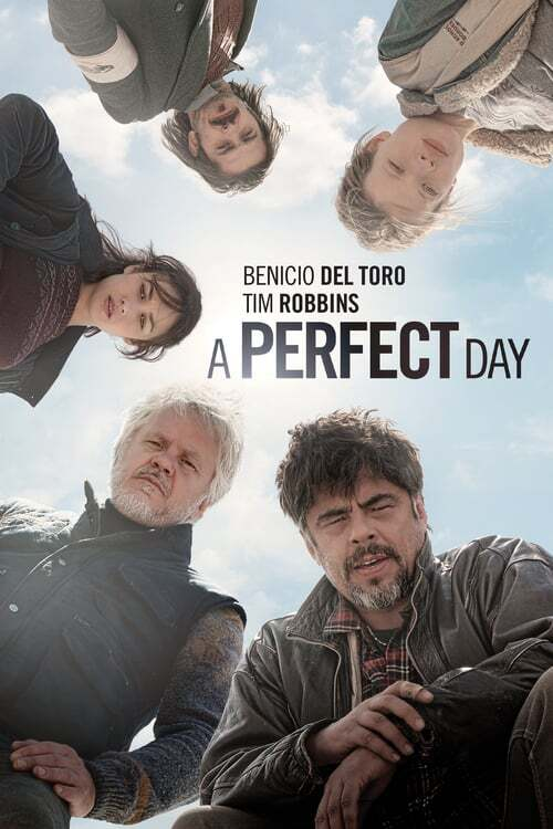 movie cover - A Perfect Day