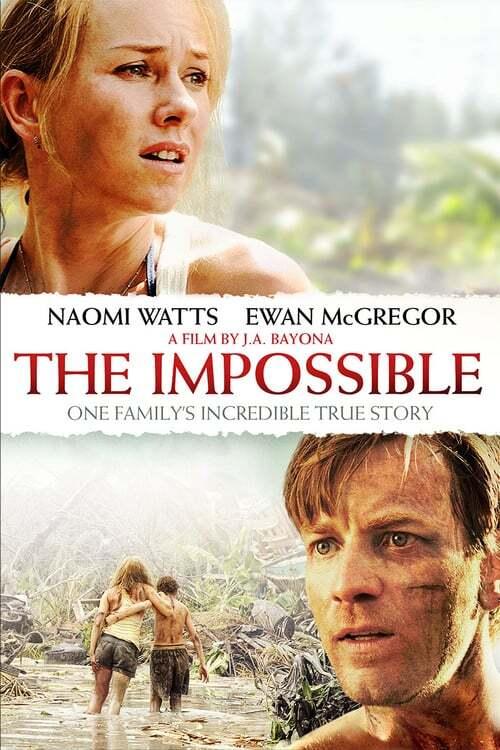 movie cover - The Impossible