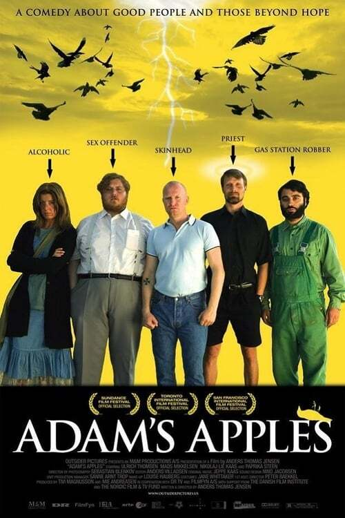 movie cover - Adam