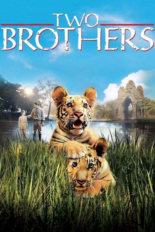 movie cover - Deux Frères