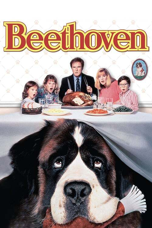 movie cover - Beethoven