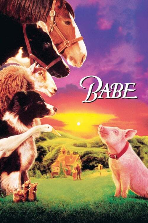 movie cover - Babe