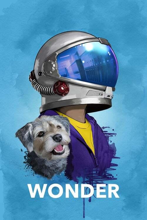 movie cover - Wonder