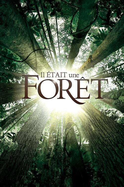 movie cover - Once Upon A Forest