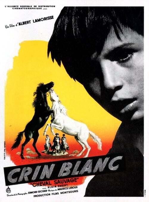 movie cover - Crin Blanc: Le Cheval Sauvage