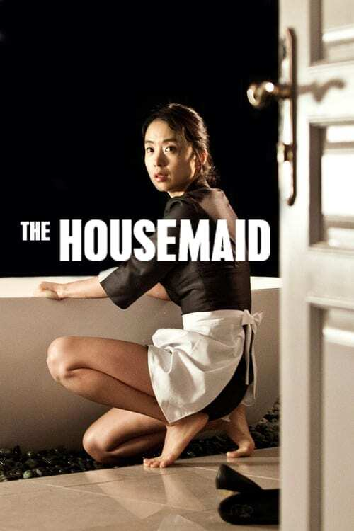 movie cover - The Housemaid