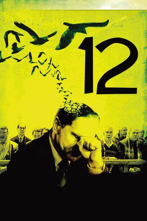 movie cover - 12