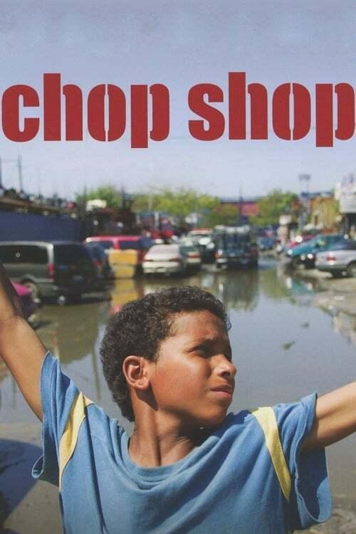 movie cover - Chop Shop