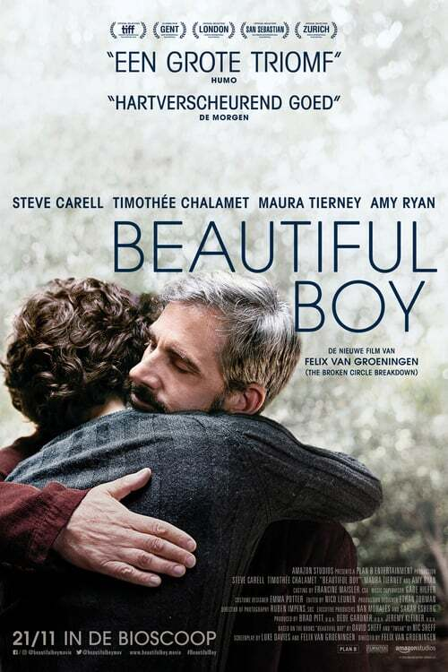 movie cover - Beautiful Boy