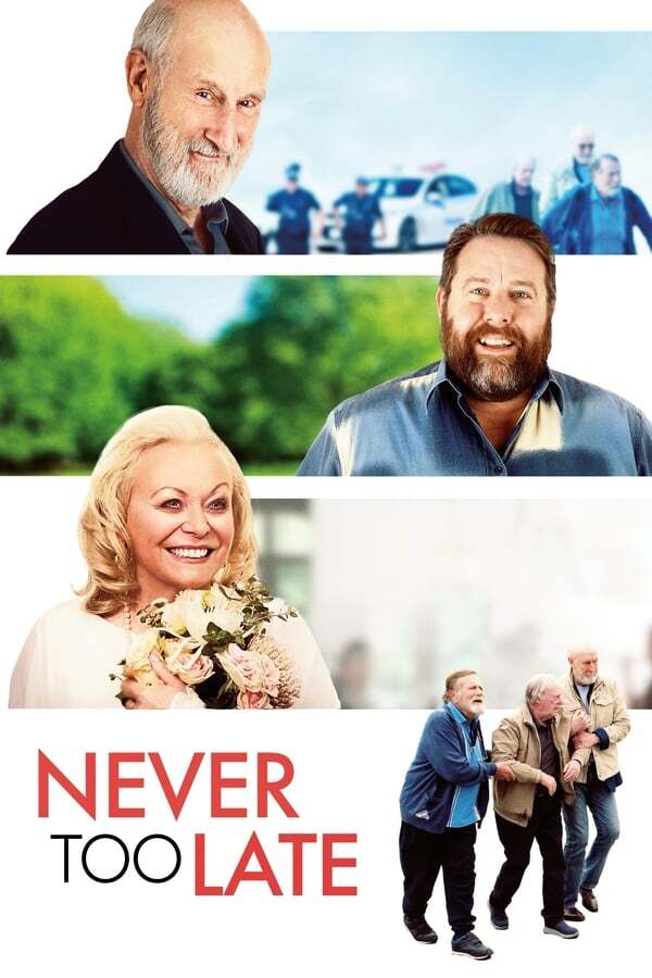 movie cover - Never Too Late