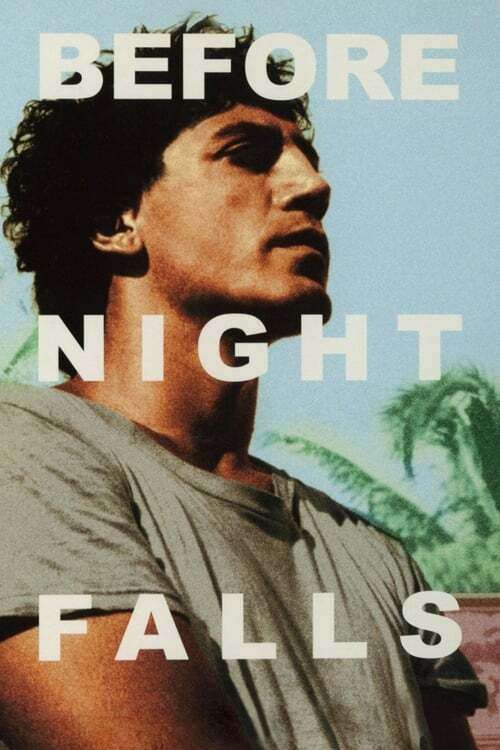 movie cover - Before Night Falls