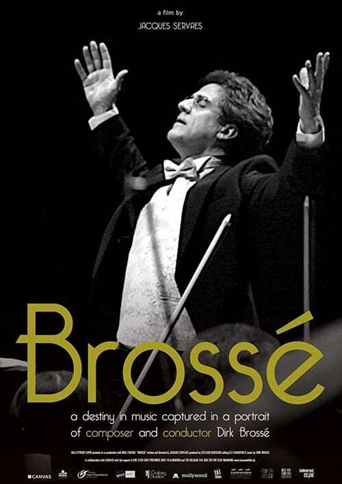 movie cover - Brossé