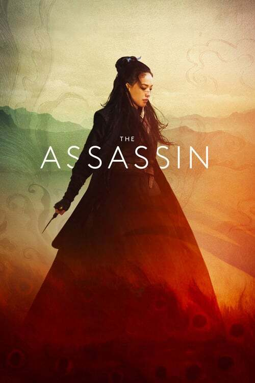 movie cover - The Assassin