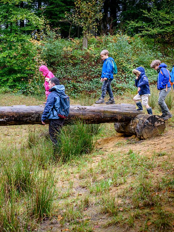 Kinderen spelen op boomstam