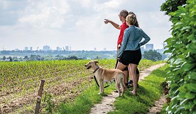 wandelende mensen kijken vanuit de natuur naar de stad