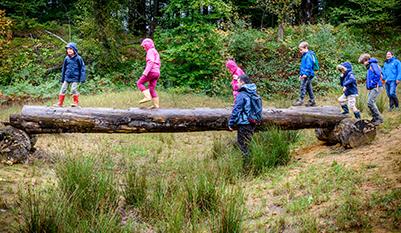 Kinderen spelen op omgevallen boomstam