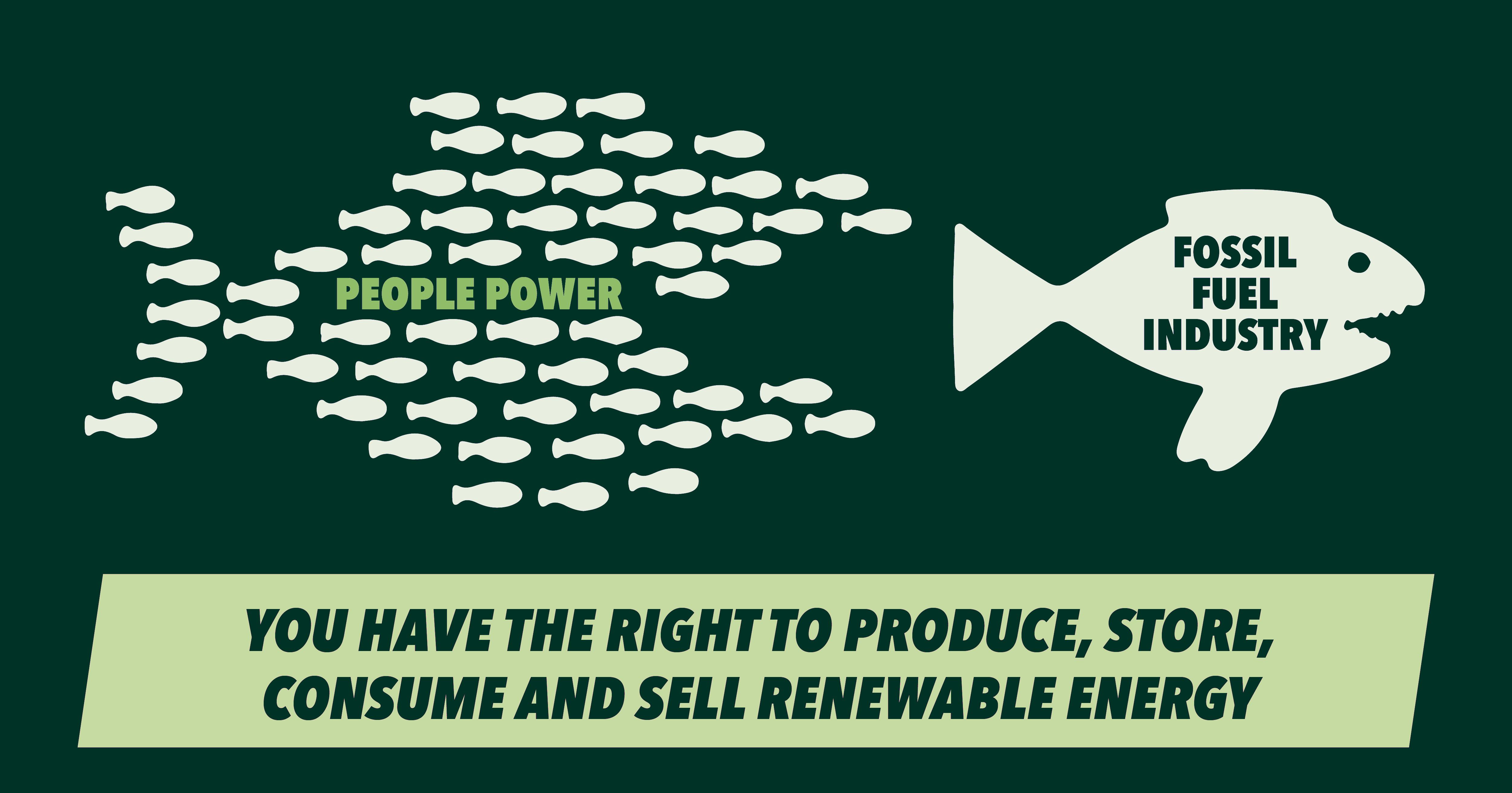 De nieuwe EU-regelgeving moet de weg vrijmaken voor volwaardige burgerparticipatie in de energietransitie.