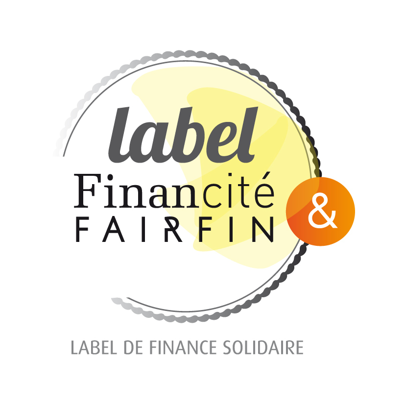 FairFin-label