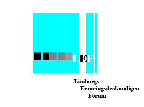 LEF (Limburgs Ervaringsdeskundigen Forum)