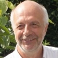 Dirk Van Mechelen