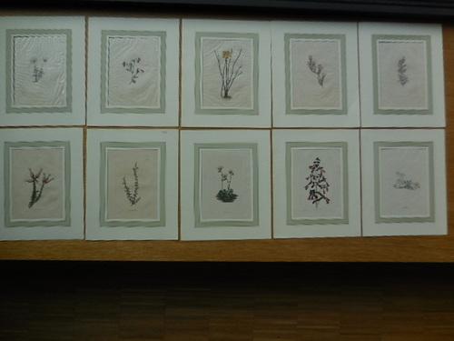 thumbnails bij product Handgekleurde etsen van planten