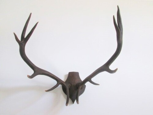 thumbnails bij product old antlers