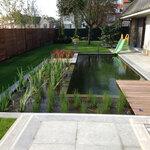 Zwemvijver ingewerkt in de tuin