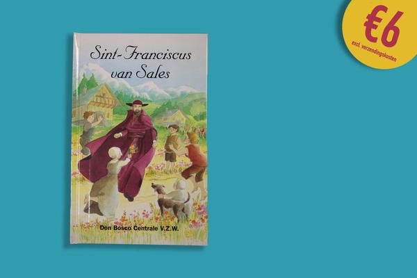 Afbeelding bij Sint-Franciscus van Sales