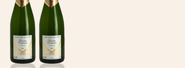 Roualet-Desbordes Champagne Brut, Champagne AOC, Champagne, France