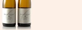 2006 Le Bourgogne-Chardonnay, Domaine Chanson, Bourgogne AOC, Bourgogne, France