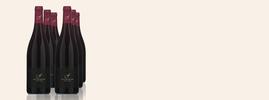 2020 Pinot Noir, Fournier Père & Fils, Vin de France, Vallée de la Loire, France