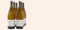 2013 Collines du Bourdic-Chardonnay, Pays D