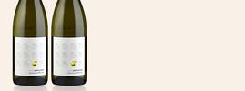 2019 Le Vilain Petit Canard, Domaine Roche, Vin de France, Rhône Valley, France