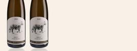 2018 Kritt Pinot Blanc, Marc Kreydenweiss, Alsace AOC, Alsace, France