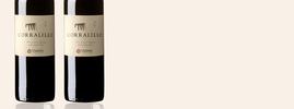 2016 Corralillo Winemaker