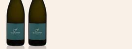 2020 Sauvignon Blanc, Fournier Père & Fils, Vin de France, Vallée de la Loire, France