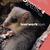 Biogenie 4 (1u/week) leerwerkboek