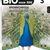 Bio voor jou 3 bronnenboek voor niet-wetenschappelijke en wetenschappelijke richtingen