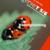 BIOgenie-T 5/6 - Biologie voor de derde graad van het tso/kso Voortplanting