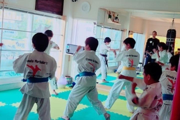 Rishinjuku karate en MMA