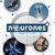 Neurones + 2 Cahier d