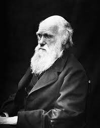 Charles Darwin (Survival of the fittest)
