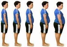 foto bij artikel Kan obesitas voorspeld worden met een DNA-test?