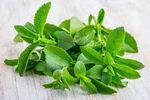 afbeelding bij artikel Houdt stevia de bloedsuikerspiegel onder controle?